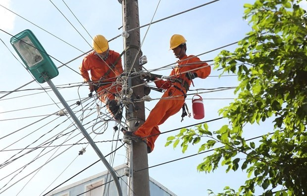 EVN produces one third of domestic electricity output hinh anh 1