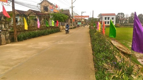 Over 54 percent of communes recognised as new-style rural areas hinh anh 1