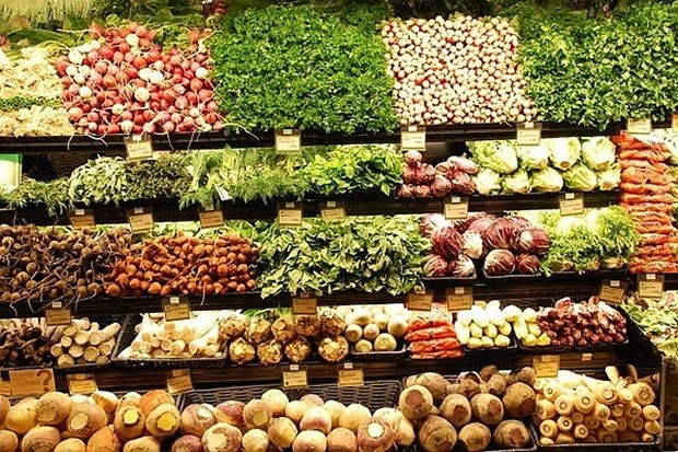 Vietnam develops modern supply system for farm products hinh anh 1