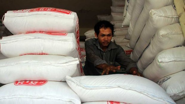 Cambodia's rice exports surge in first two months hinh anh 1