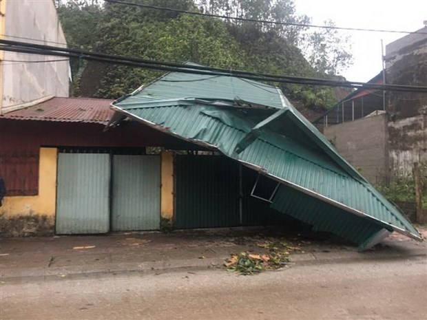 Whirlwinds, hails injure six in Yen Bai hinh anh 1