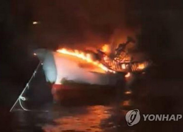 Embassy in RoK conducts citizen protection measures after fishing boat fire hinh anh 1