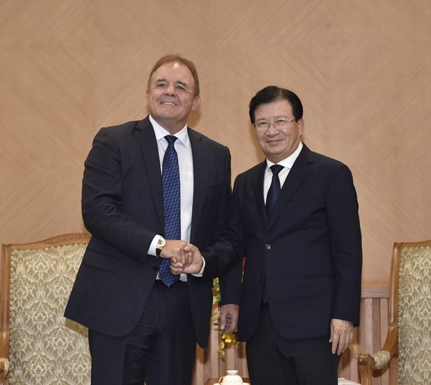 Deputy PM receives Singaporean energy firm's leader hinh anh 1