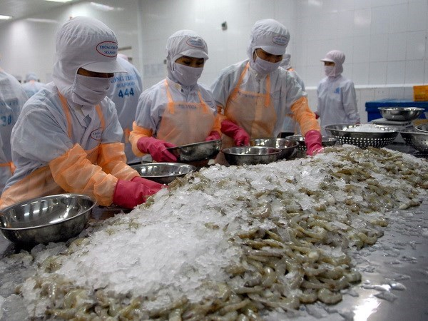 Shrimp exporters in Mekong Delta face challenges amid Covid-19 hinh anh 1