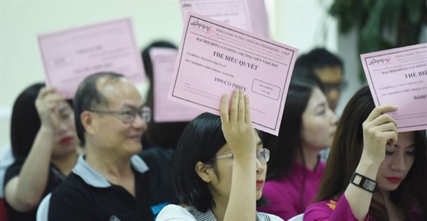 Shareholders' meetings to proceed as usual, say firms hinh anh 1