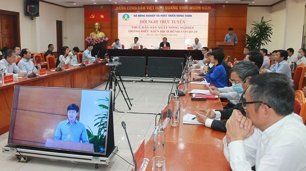 Agricultural production needs a boost amid COVID-19: conference hinh anh 1