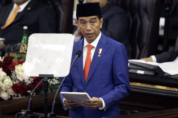 Indonesian President demands massive coronavirus testing for earlier detection of cases hinh anh 1