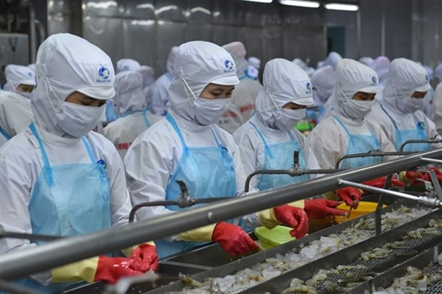 Pandemic has little impact on Vietnam's shrimp exports hinh anh 1