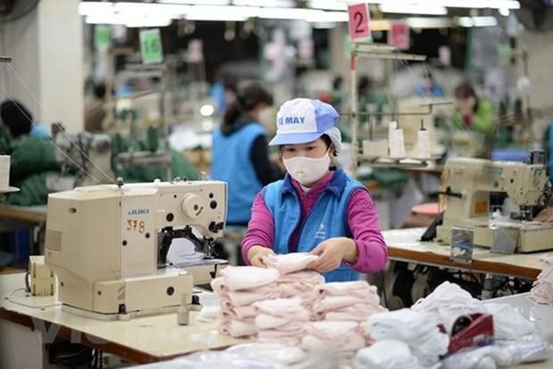 Dong Xuan knitting company aims to produce 60,000 face masks per day hinh anh 1