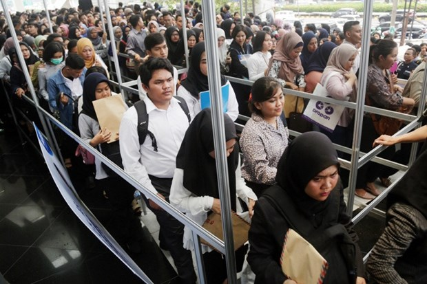 Indonesia launches pre-employment card hinh anh 1