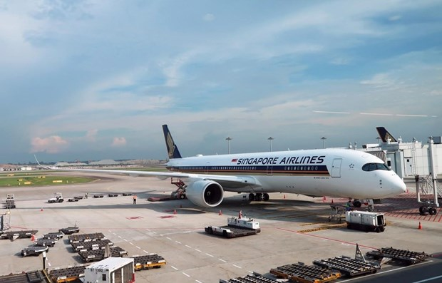 COVID-19 outbreak makes Singapore Airlines cut 96 percent of capacity hinh anh 1