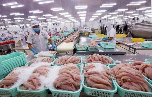 Agro-forestry-fishery exports to US, EU hit by COVID-19 hinh anh 1