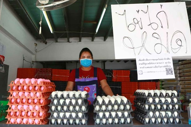 Thailand bans export of chicken eggs for seven days hinh anh 1