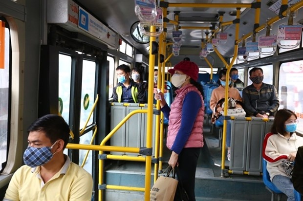 Hanoi cuts 80 percent of bus trips over COVID-19 fears hinh anh 1