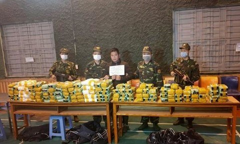 Transnational drug ring busted, 650kg of drugs seized hinh anh 1
