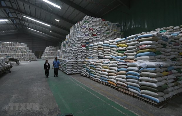 National food reserves always sufficient for emergencies: authority hinh anh 1
