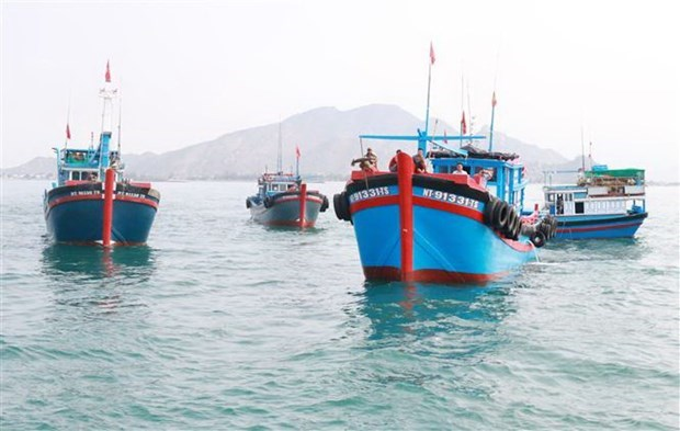 Ninh Thuan popularises Fisheries Law among fishermen to fight IUU fishing hinh anh 1