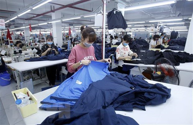 Business survey to begin on April 1 hinh anh 1