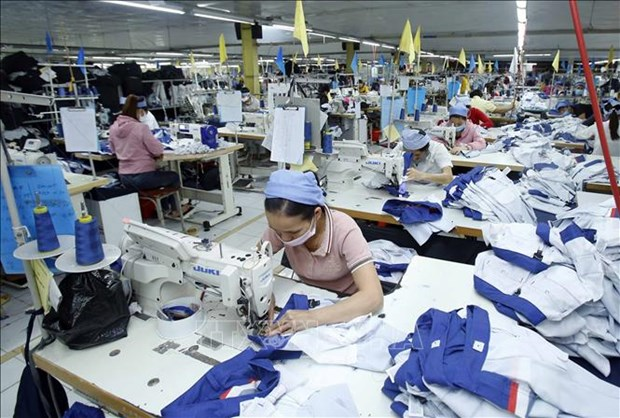 Economists: More measures needed to support enterprises amid COVID-19 hinh anh 1