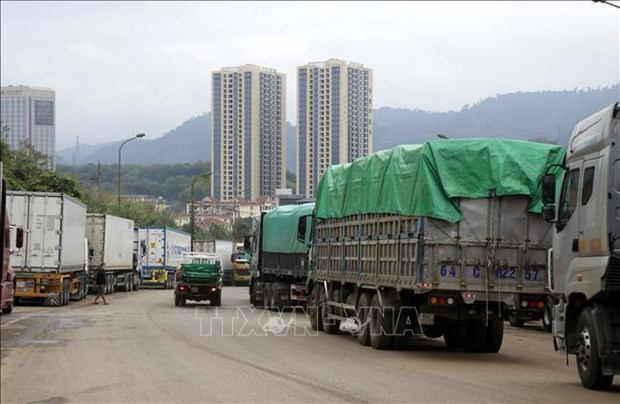 Exporters urged to prioritise containing COVID-19 hinh anh 1