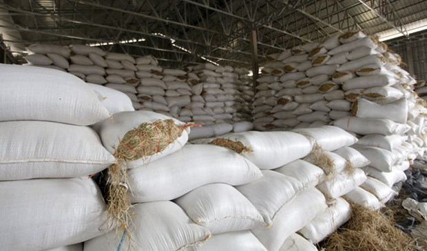 Cambodia calls on rice millers, exporters to buy paddy hinh anh 1