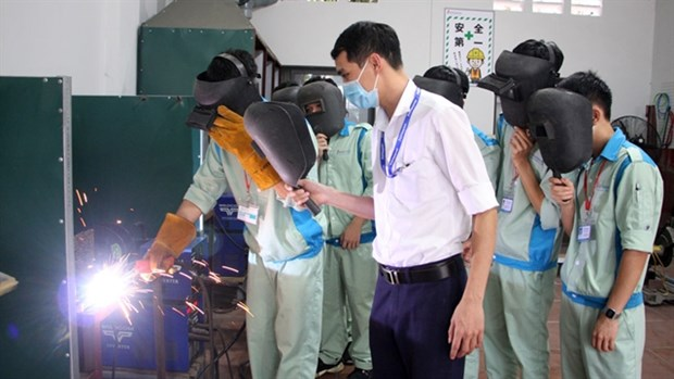 Labour export companies hit hard by COVID-19 pandemic hinh anh 1