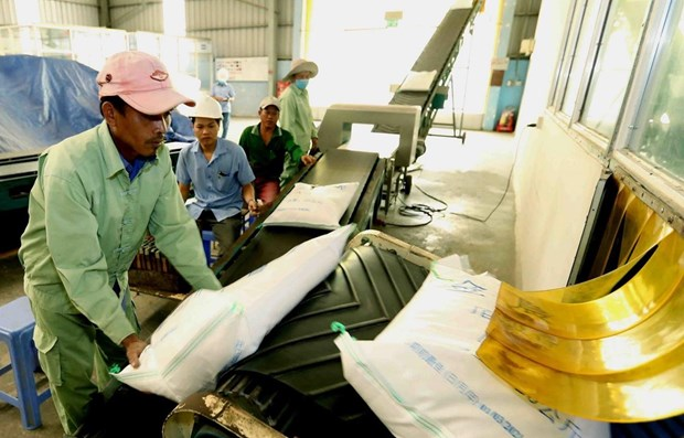 Myanmar exports over 1.64 mln tonnes of rice in 2019-2020 fiscal year H1 hinh anh 1