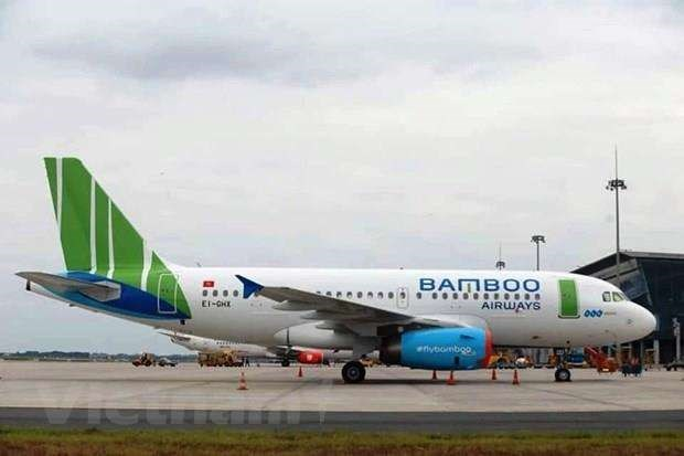 Bamboo Airways to resume domestic flights from April 16 hinh anh 1