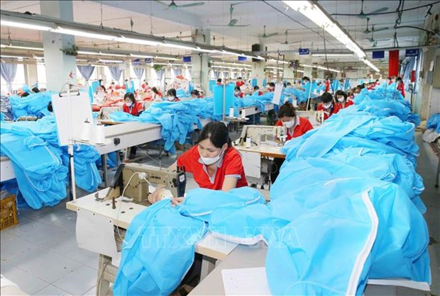 Mask, protective clothing exporters must meet EU standards: Authority hinh anh 1