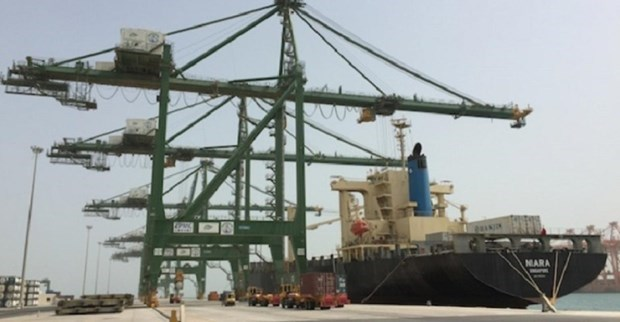 Singapore company invests in container terminals in Saudi Arabia hinh anh 1
