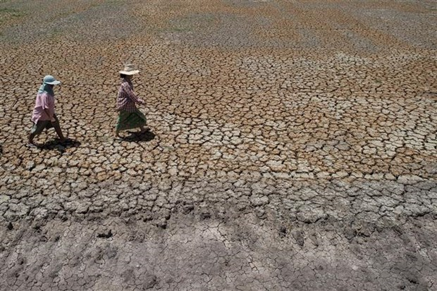 Thailand faces severe drought, rising unemployment hinh anh 1