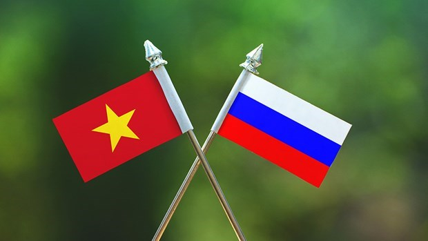 Vietnamese citizens lauded for support to Russia's COVID-19 fight hinh anh 1
