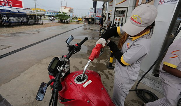 Cambodia's economy impacted by record-low oil prices hinh anh 1