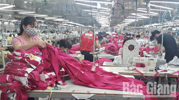 Bac Giang works to generate more jobs hinh anh 1