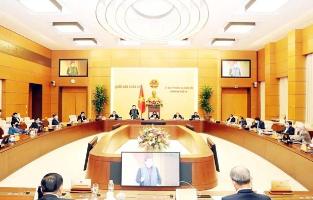 NA Standing Committee debates draft resolution on development in Da Nang hinh anh 1