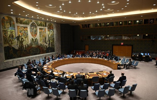 UNSC discusses Kosovo mission's operation hinh anh 1