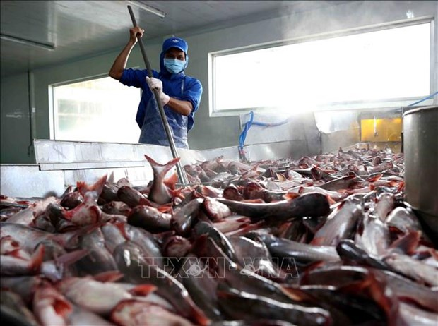 US cuts anti-dumping taxes on Vietnamese catfish products hinh anh 1