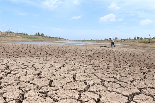 Drought, saltwater dry up Mekong Delta's largest reservoir hinh anh 1
