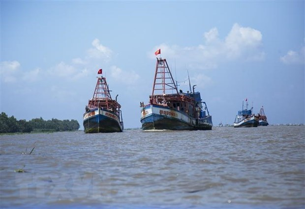 Fisheries Society opposes Chinese fishing bans in East Sea hinh anh 1