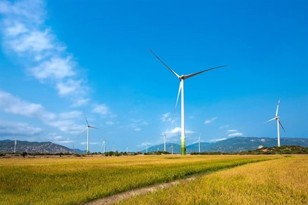 Wind power plant set to operate in Ninh Thuan hinh anh 1