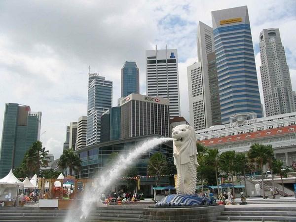 Singapore scrutinising factors to start reopening economy hinh anh 1