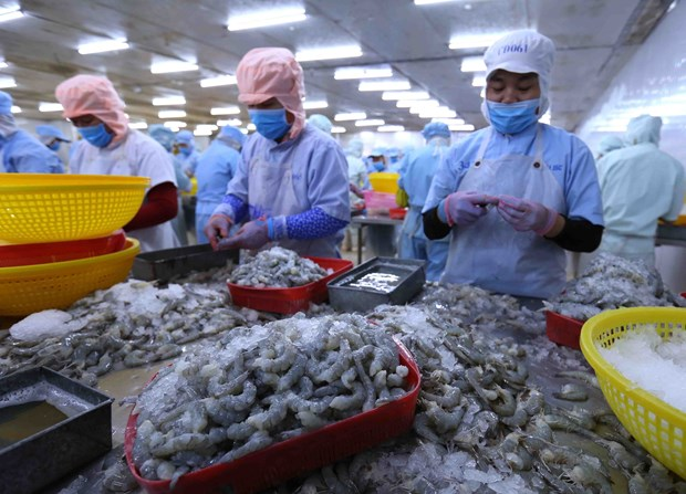 Ministry extends period selecting prestigious exporters 2019 hinh anh 1