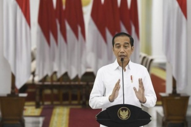 Indonesia halts regional elections due to COVID-19 hinh anh 1