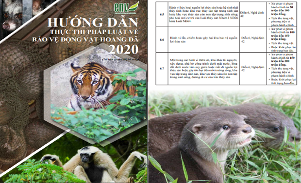 Organisation re-releases key wildlife-related law enforcement guidance hinh anh 1
