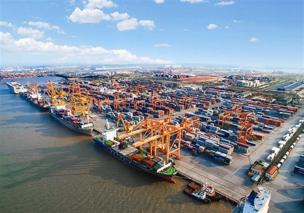 Cutting costs crucial to survival of maritime transport hinh anh 1
