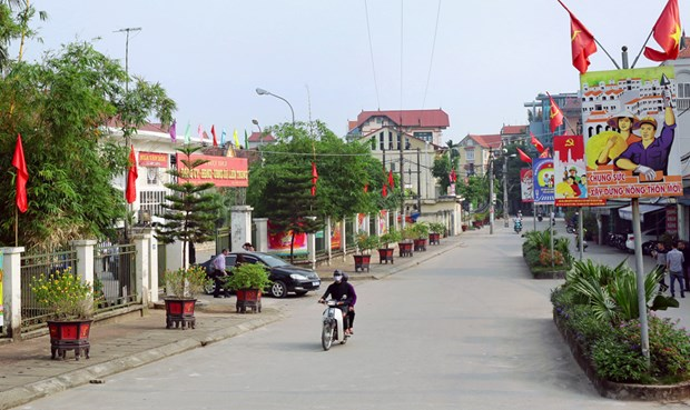 Hanoi targets 10 new-style rural districts in 2020 hinh anh 1