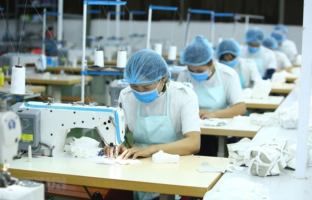 Garment sector focuses on potential markets hinh anh 1