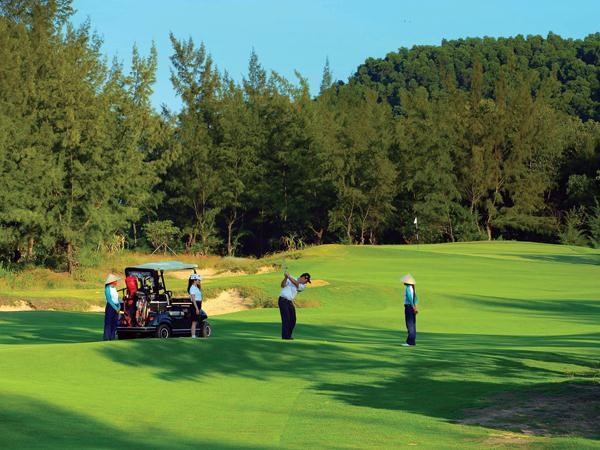 Golf course projects to be managed by business conditions hinh anh 1