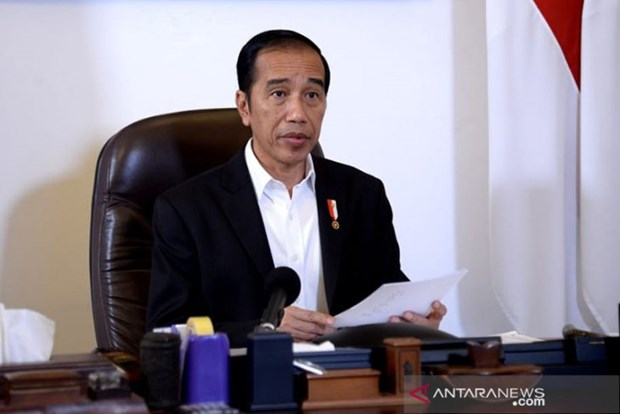 Indonesia evaluates large-scale social restrictions hinh anh 1