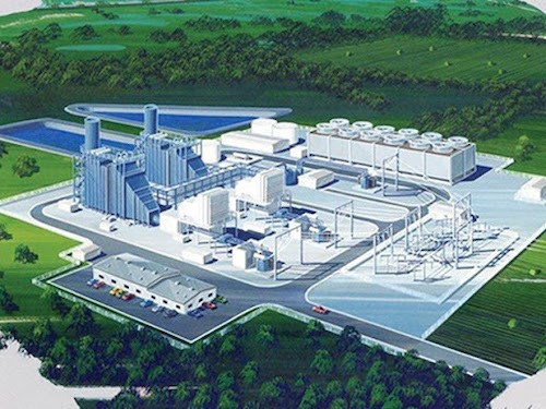 Bac Lieu attracts lion's share of FDI capital in first four months hinh anh 1